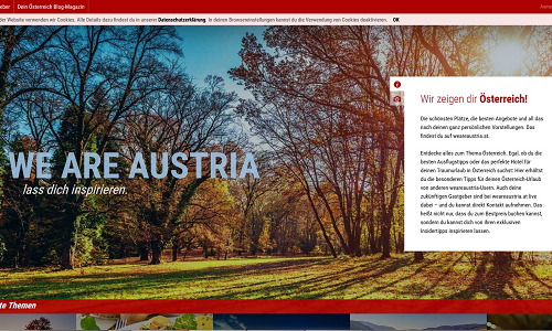 Projekt Online Marketing Referenz Puetter GmbH We Are Austria
